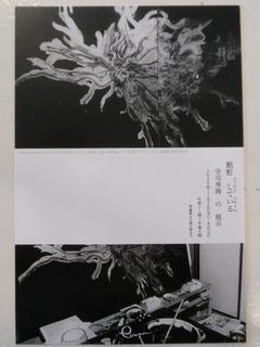 DSCN7233.JPG